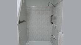 Shower with handrails